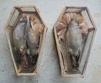 coffins-1